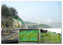 Growmat in Ting Kau Improvement project -  Highway Dept, HKSAR