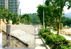 Root Barrier for Ma Wan Residential Development